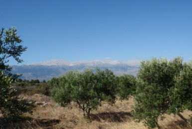 Litsarda plot, Apokoronas plot for sale