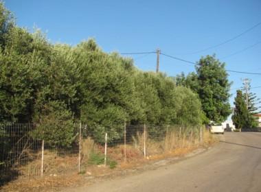 Kathiana Plot - Land for sale in Akrotiri, Chania