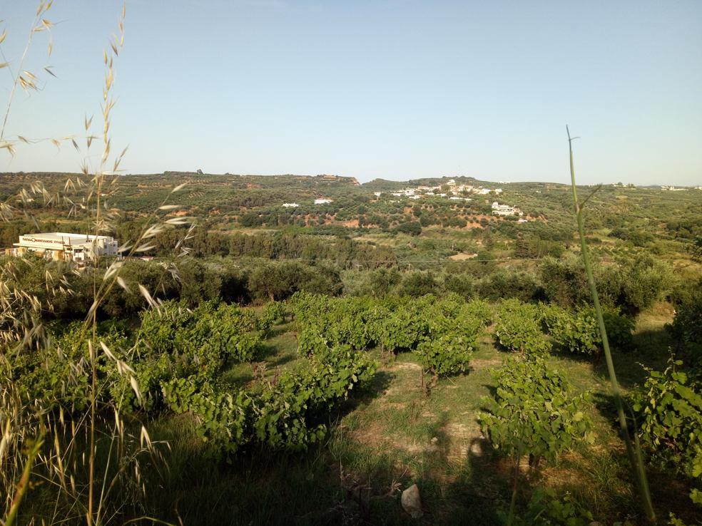 Polemarchi plot for sale near Voukolies, Platanias