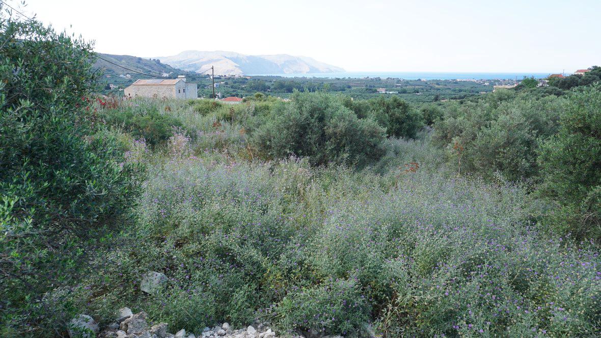 Kournas Lake Plot for sale near Georgioupolis, Chania