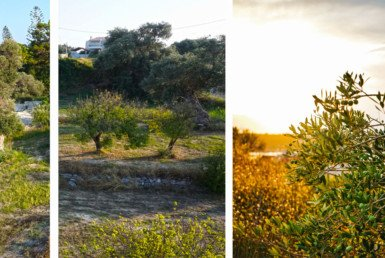 Rethymno Three Plots for sale