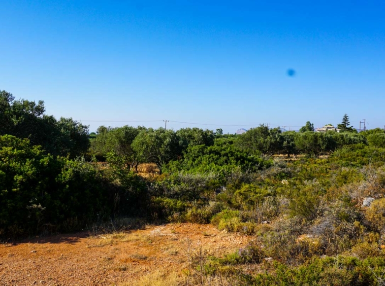 Plot for Sale in Akrotiri, Chania - ARENCORES Chania Real Estate Agents