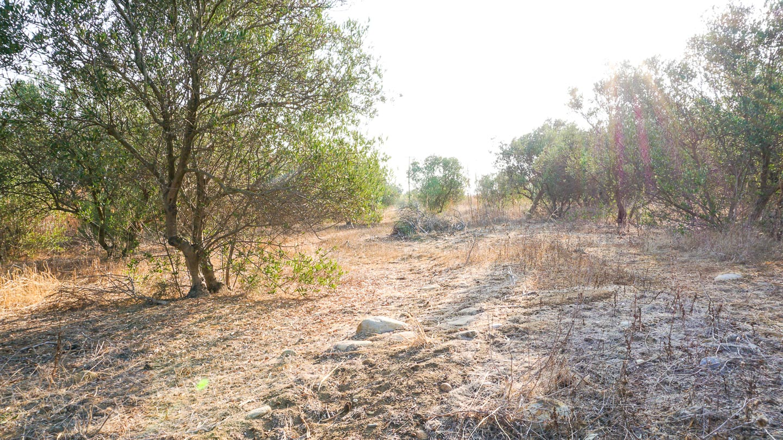A Prime Located Plot Near Platanias (Pirgos Psilonerou) South East Orientation
