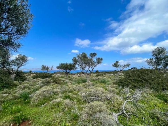 Kokkino Chorio Plot for Sale. Chania Real Estate by ARENCORES Properties.