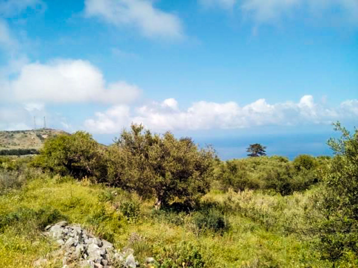 Vamos Magnificent plot for sale - Chania Real Estate